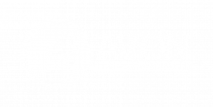 logo of avon animal hospital in windsor nova scotia